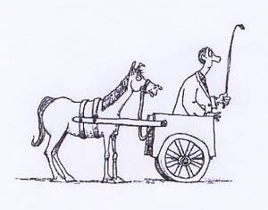 Cart before Horse